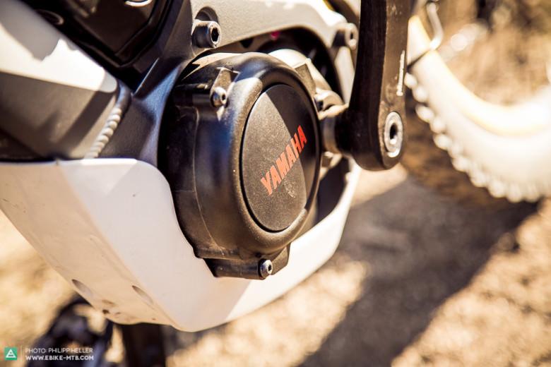 Dank der SkidPlate ist der Motor schön im Rahmen integriert und so vor Beschädigungen geschützt. Die kompaktere Bauweise bietet zudem etwas mehr Bodenfreiheit.